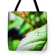 One Waterdrop Tote Bag