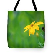 One Yellow Coreopsis Flower Tote Bag