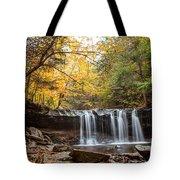 Oneida Falls 2 Tote Bag