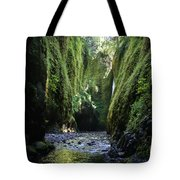 Oneonta Gorge Adventure Tote Bag