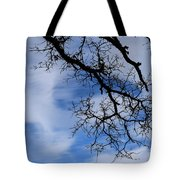 Only Once Like This Tote Bag