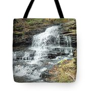 Onondaga 6 - Ricketts Glen Tote Bag