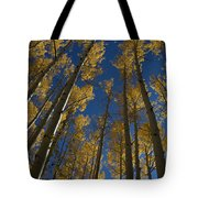 Onward Toward The Sky Tote Bag