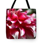 oozing With Life Dahlia Tote Bag