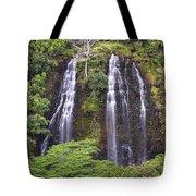 Opaekaa Falls - Kauai Tote Bag