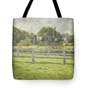 Open Air Clothes Dryer Tote Bag