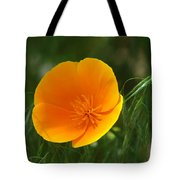 Open Up To Me Tote Bag