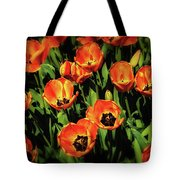Open Wide - Tulips On Display Tote Bag