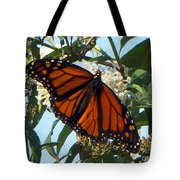 Opened Wings  Tote Bag