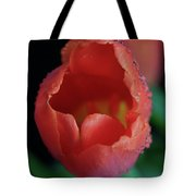 Opened Tulip Tote Bag by Tracy Hall