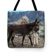 Opposing Sides Tote Bag