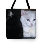 Opposites Tote Bag