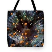 Orange And Black Anemone, Komodo Tote Bag