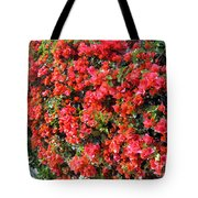 Orange And Colral-pink Flowers 2 Tote Bag