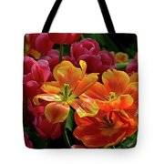 Orange And Red Tulip Lilies In Various Stages Of Bloom Tote Bag