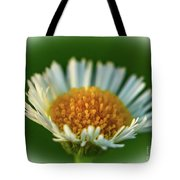 Orange And White Flower Tote Bag