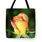 Orange And Yellow Rose Tote Bag