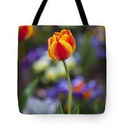 Orange And Yellow Tulip Tote Bag