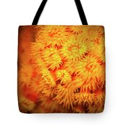 Orange Anemones Tote Bag