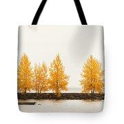 Orange Autumn Tote Bag