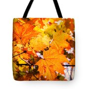 Fall Of Orange Leaves Tote Bag