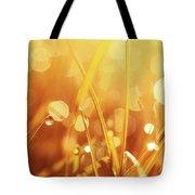 Orange Awakening Tote Bag