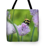 Orange-belted Bumblebee On Chive Blossoms Tote Bag