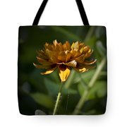 Orange Blanket Flower Tote Bag