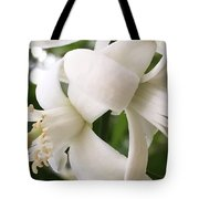 Orange Blossoms #4 Tote Bag