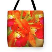 Orange Cattleya Orchid Tote Bag