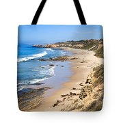 Orange County California Tote Bag by Paul Velgos