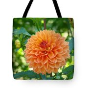 Orange Dahlia Master Gardeners Art Collection Baslee Troutman Tote Bag