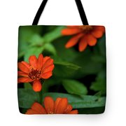 Orange Daisey's Tote Bag