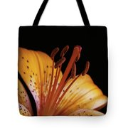Orange Day Lilly On Black Tote Bag
