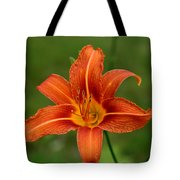 Orange Day Lily No.2 Tote Bag