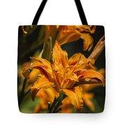Orange Daylily Tote Bag