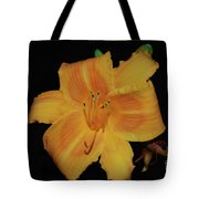 Orange Daylily Flower Blossom In A Garden Tote Bag