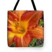 Orange Daylily With Dew Tote Bag