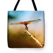 Orange Dragonfly Wings I Tote Bag