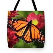 Orange Drift Monarch Butterfly Tote Bag