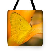 Orange Emigrant Butterfly Tote Bag