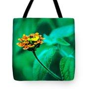 Orange Flower II Tote Bag