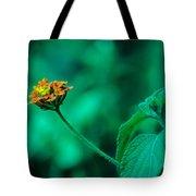 Orange Flower IIi Tote Bag