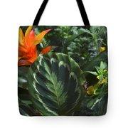Orange Flower Longwood Gardens Tote Bag