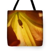 Orange Flower Stamen Tote Bag