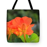 Orange Flowers On A Plant Tote Bag