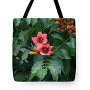 Orange Flowers On A Vine Tote Bag