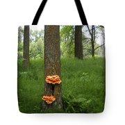 Orange Fungi On A Tree Tote Bag