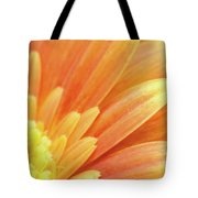 Orange Gerbera Petals Tote Bag