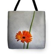 Orange Gernera Tote Bag